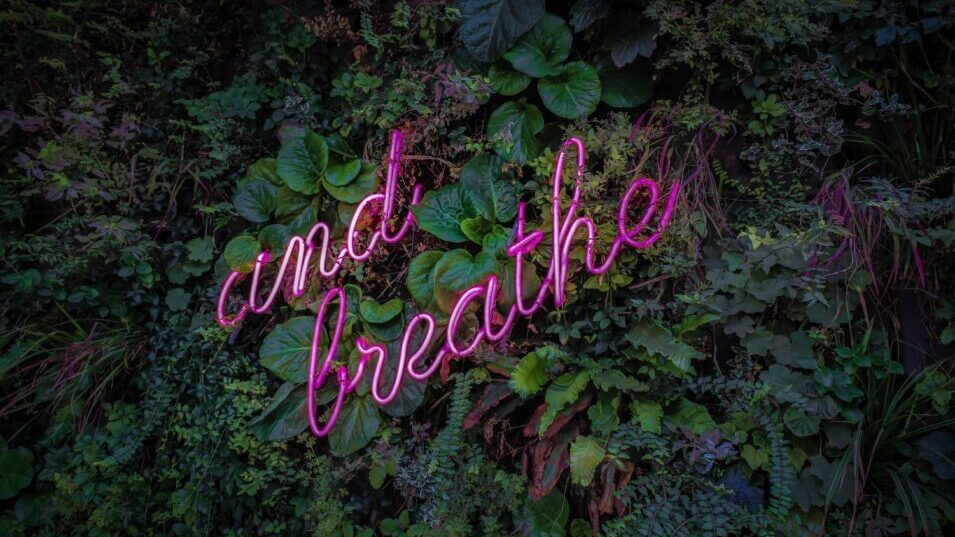 And Breathe in neon pink with leafy background